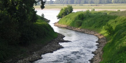 Die Mündung der Erft in den Rhein